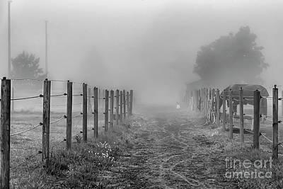 Studio Grafika Science - Foggy Morning Country Lane by Antony McAulay