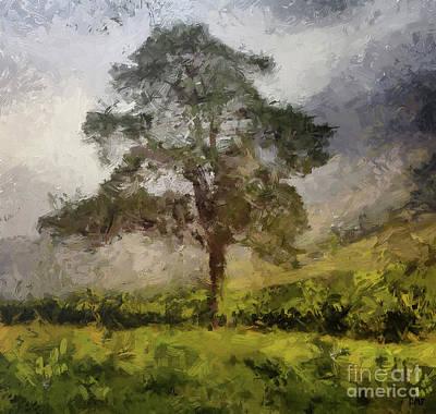 Monochrome Landscapes - Foggy Morning by Dragica Micki Fortuna