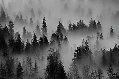 Photograph - Foggy Yosemite II by Jon Glaser