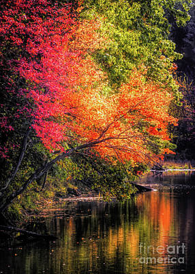Photograph - Foliage Over Forge Pond by Anita Pollak