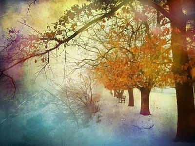 Photograph - Follow Me Into The Dreams Of Trees by Tara Turner