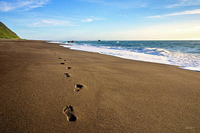 Photograph - Footprints In Lost Coast Sand by Leland D Howard