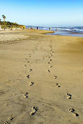 Photograph - Footprints Of A Couple And Their Dog by Gloria Moeller