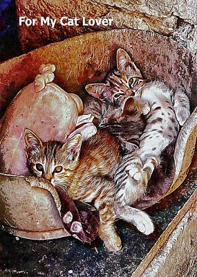 Mixed Media - For My Cat Lover by Dorothy Berry-Lound