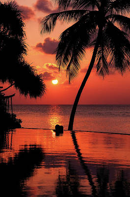 Photograph - For You. Dream Coming True I. Maldives by Jenny Rainbow