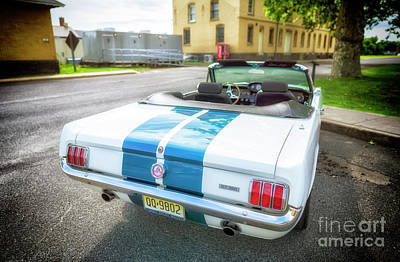 Photograph - Ford Mustang Gt 350 by John Rizzuto