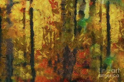 Photograph - Forest Colours by Elaine Manley