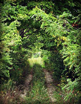 Photograph - Forest Path by Cyryn Fyrcyd