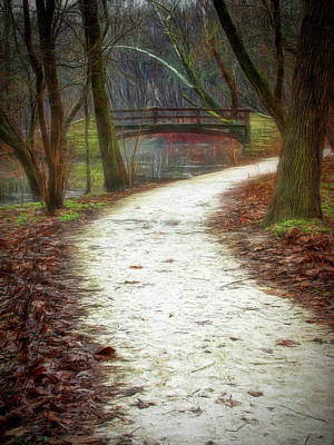 Photograph - Forest Path by Patricia Cale