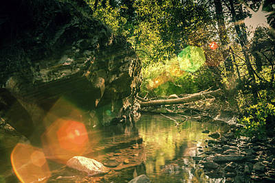 Photograph - Forest Stream by Jeanette Fellows