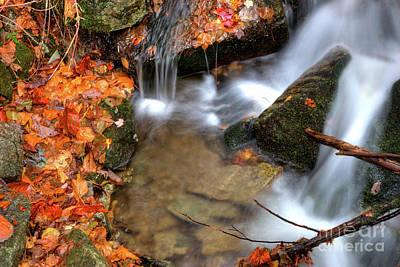 Photograph - Forgotten Cascades by Dan Carmichael