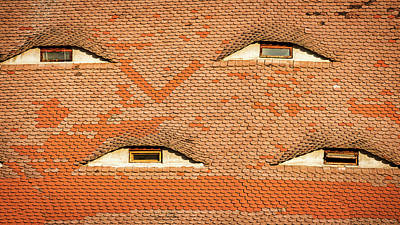 Photograph - Four Eye Windows - Romania by Stuart Litoff