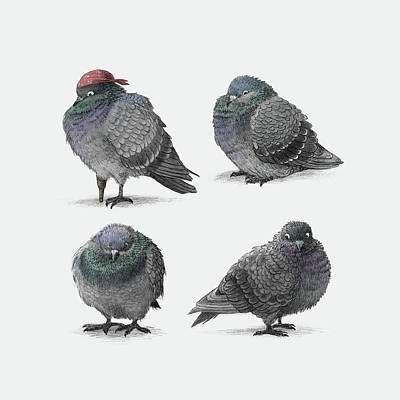 Drawing - Four Pigeons by Eric Fan