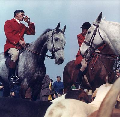 Photograph - Fox-hunt by Chaloner Woods