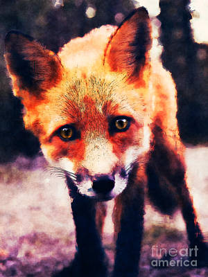 Digital Art - Fox by Phil Perkins