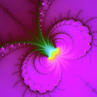 Royalty-Free and Rights-Managed Images - Fractal Art purple fuchsia green yellow by Matthias Hauser