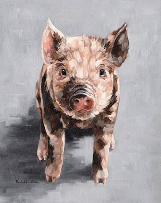 Baby Pigs Wall Art - Painting - Frankie by Rachel Stribbling