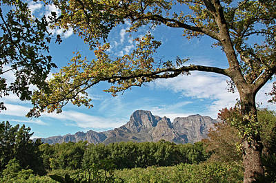 Photograph - Franschoek, South Africa by Images Unlimited