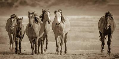 Photograph - Free Family 2 by Mary Hone