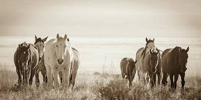 Photograph - Free Family 3 by Mary Hone