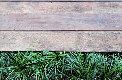 Photograph - Fresh Green Grass On Wood Background by Primeimages