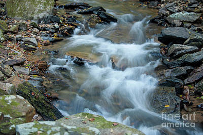 Photograph - Fresh Mountain Water by Dale Powell