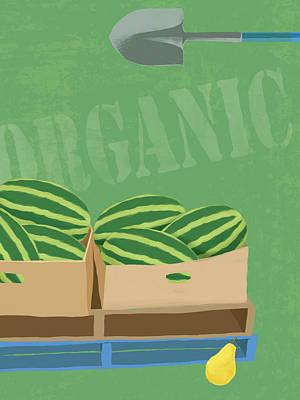 Digital Art - Fresh Organic Melons Illustration by Don Bishop