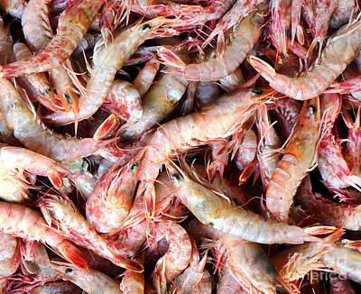Photograph - Fresh Prawns At The Fish Market by Yali Shi