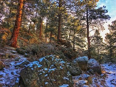 Photograph - Fresh Snow On Fillius Ridge by Dan Miller