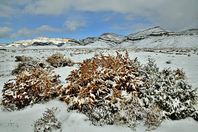 Photograph - Fresh Snow On The Book Cliffs by Ray Mathis