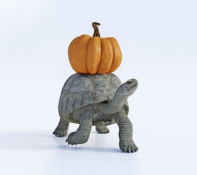 Digital Art Rights Managed Images - Friends The Tortoise and the Pumpkin Royalty-Free Image by Betsy Knapp
