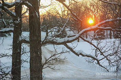 Photograph - Frigid Sunrise by Kevin McCarthy
