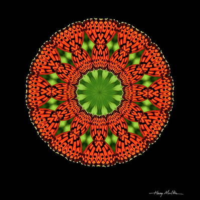 Photograph - Fritillary Mandala by Harry Moulton