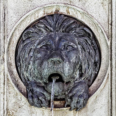 Photograph - Front View Of Lion Fountain by Roberto Pagani
