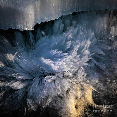 Photograph - Frost Crystals by Roger Monahan