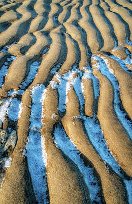 Photograph - Frosted Tide Lines by Gary Slawsky