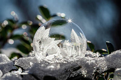 Photograph - Frozen Bubbles by Jessica Nelson