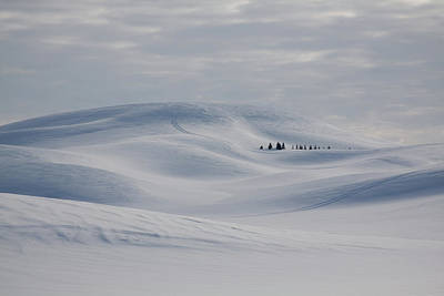 Photograph - Frozen Winter Hills by Tatiana Travelways