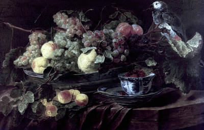 Painting - Fruits And Parrot By Jan Fyt, 1640s by Superstock