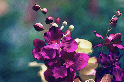 Mixed Media - Fuchsia Pink Vanda Orchid by Susan Maxwell Schmidt