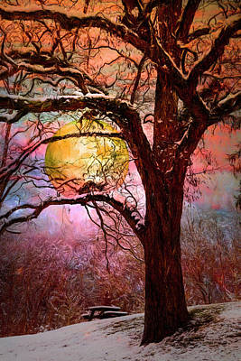 Photograph - Full Moon In The Trees Painting by Debra and Dave Vanderlaan