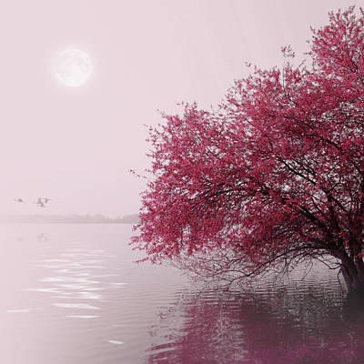 Reflection Photograph - Full Moon On The Lake by Philippe Sainte-laudy Photography