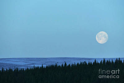 Photograph - Full Moon Over Moor At Dusk by Phil Banks