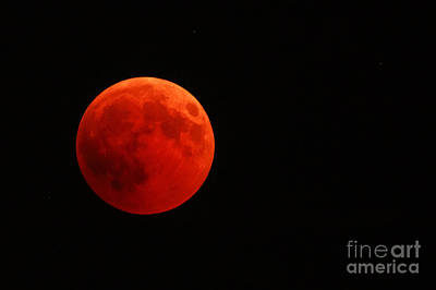 Photograph - Full Red Moon by Benny Marty