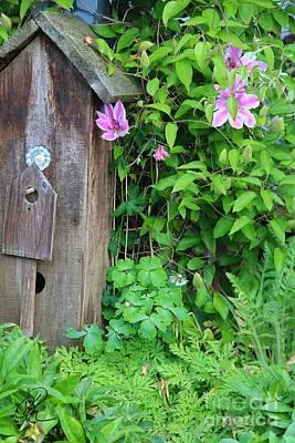 Photograph - Garden B And B by Ann E Robson