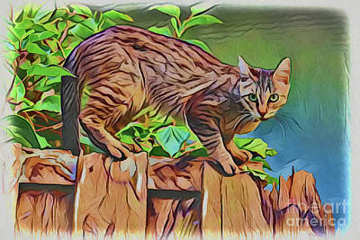 Painting - Garden Cat A18-125 by Ray Shrewsberry