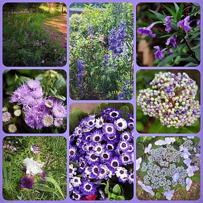 Garden In Purples Collage Original