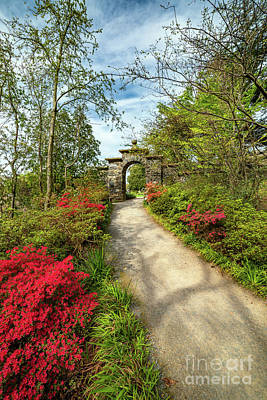 Photograph - Garden Path And Arch by Adrian Evans