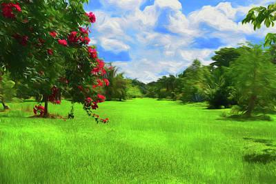 Photograph - Garden View Series 58 by Carlos Diaz