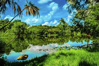 Photograph - Garden Views Series 60 by Carlos Diaz